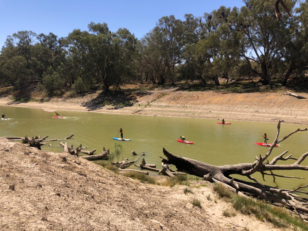 Secondary students paddle boarding on the Baaka (Darling River)